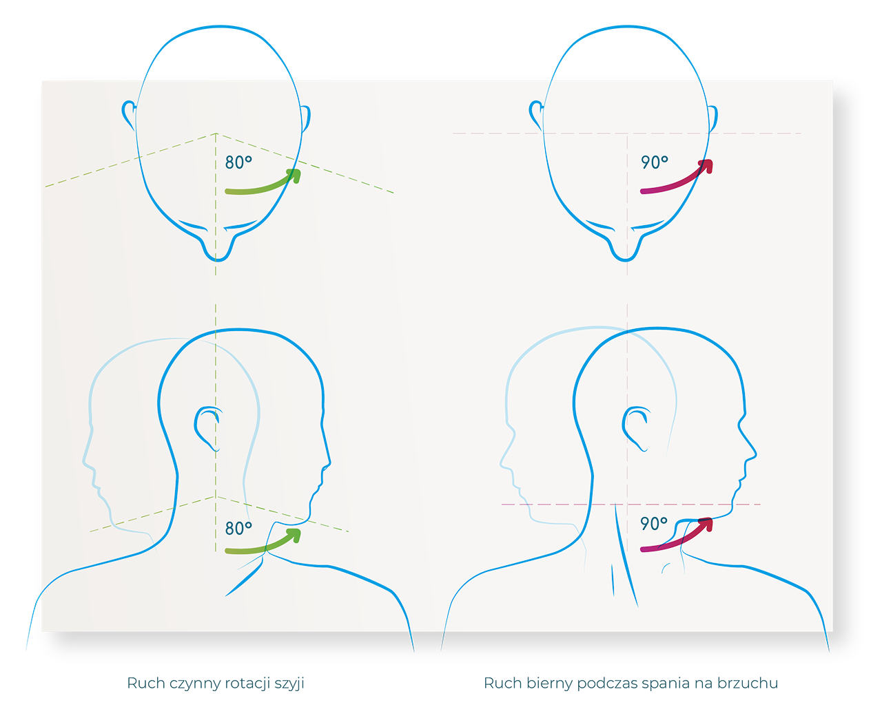 rotacja szyi ruch czynny ruch bierny spanie na brzuchu